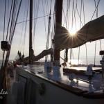cele mai frumoase fotografii de la regata marii negre 20141