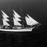 regata marii negre 2014 - parada velelor (1)