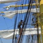 regata marii negre 2014 - parada velelor (56)
